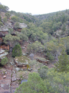 Store Creek In Cocoparra National Park