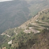 Hairpin Bends On Pass Road
