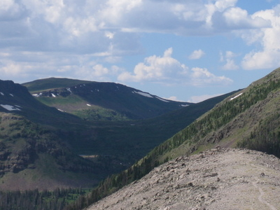 Continental Divide Trail In  Weminuche  Wilderness