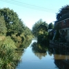 Coventry Canal Near Fradley