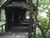 Covered  Bridge  Green  Mountain