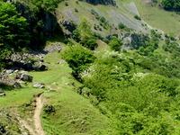 Roca Cilau