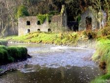 Cresswell Castle In Pembrokeshire