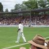 Cricket At Manuka Oval