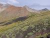 Cross Peak, Lizard Head Wilderness