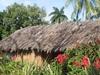 Cuba Baracoa Cabin