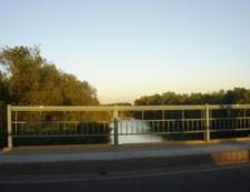 Culiacan River