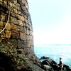 Curve Shape Fort Wall