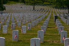 Section 2, Cypress Hills National Cemetery