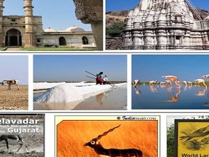 Grand Gujarat Fotos