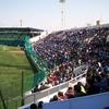 Daegu Baseball Stadium - View