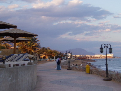 Beach Promenade On A Winter Day