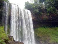 Dambri Cachoeira