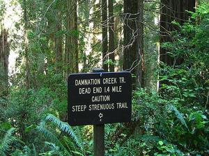 Damnation Creek Trail