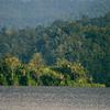 Danau Lindu Lake In The National Park