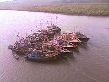 Dapoli-Fishing Port