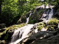 Oscuro Falls Hollow