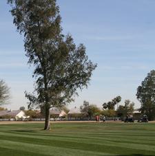 Dave White Municipal Golf Course