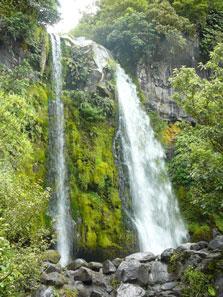 Dawson Falls - Bottom View