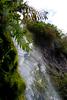 Dawson Falls - Egmont