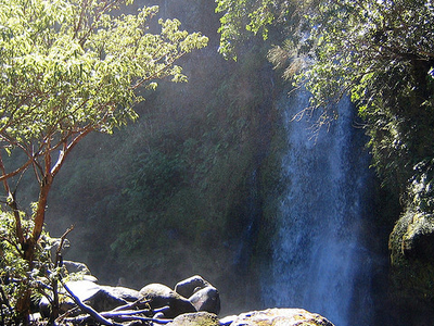 Dawson Falls Viewing Point Walk - North Island - New Zealand
