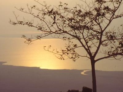 Dead Sea In The Morning