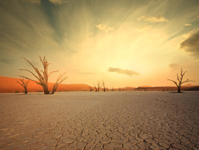 Deadvlei - Namib Desert Namibia