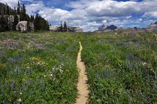 Death Canyon Trail Views - Grand Tetons - Wyoming - USA
