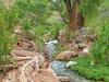 Deer Creek - Grand Canyon - Arizona - USA