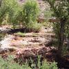 Deer Creek Trail 45 - Tonto National Forest - Arizona - USA