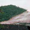 Deforestation Of Atlantic Forest In Rio De Janeiro