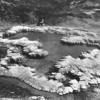 Deluge Geyser - Yellowstone - USA