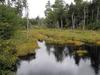Dennys River Maine