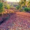 Devgadh Baria Khos Valley