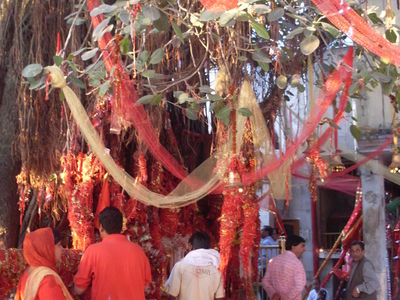 Devotees Tie Red Crimson Threads On Making A Wish