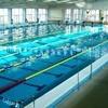 Dezső Gyarmati Swimming Pool - Hungary