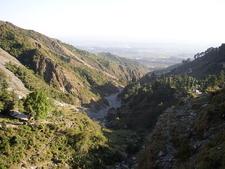 Dharamsala Valley