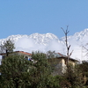 Dhauladhar Mountains