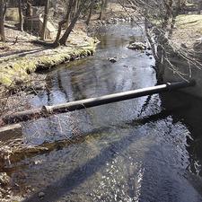 Diamond Brook