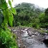 Dinangasan River View