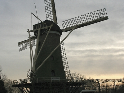 Windmill In Dirksland