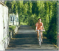 Discover Nature On Your Bicycle