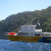 Dive Boat @ Poor Knights Site NZ