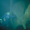 Diver Near The Propeller Of The Henry Chisholm