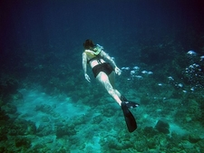 Diving Into The Great Blue Hole