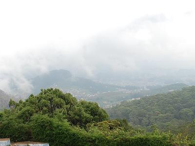 View Of Doddabetta