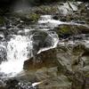 Dog Salmon Fish Pass Trail