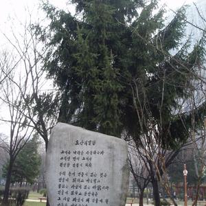 Dosan Park Inscription
