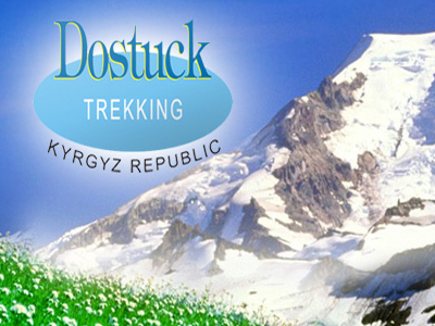 Dostuck Logo With Mountain