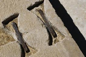 Dovetail Staples From Pasargadae